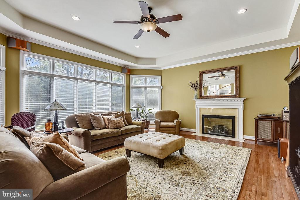 Family room with gas fireplace - 19186 CHARANDY DR, LEESBURG