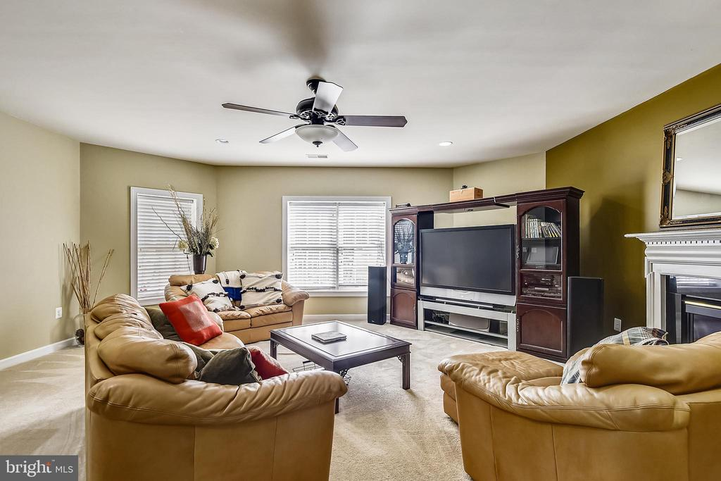 Walk out lower level family room - 19186 CHARANDY DR, LEESBURG