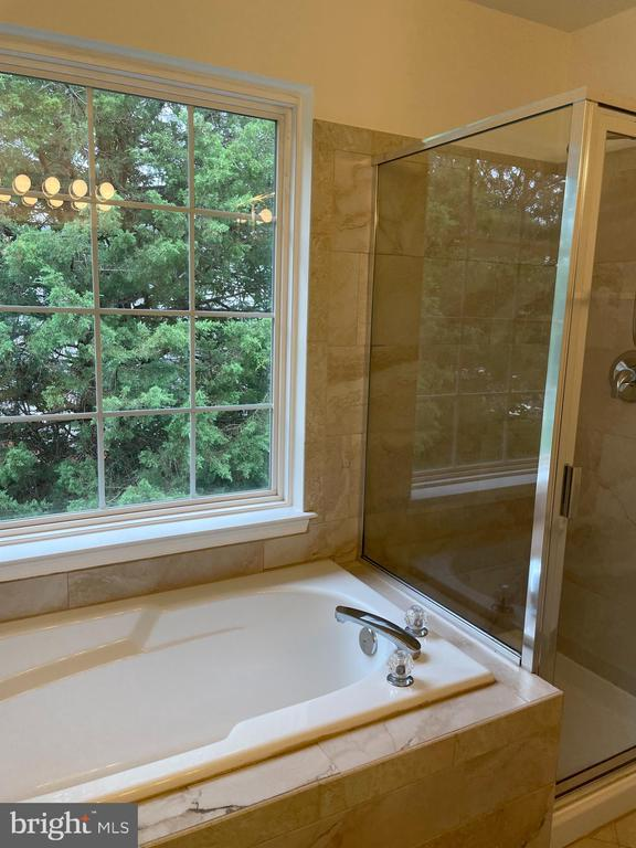 Master bedroom bath - 45677 LIVINGSTONE STATION ST, STERLING