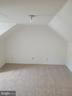 Bonus Room - 208 MAYFIELD AVE, FREDERICKSBURG