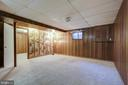 Recreation Room Lower Level - 14136 CRICKET LN, SILVER SPRING