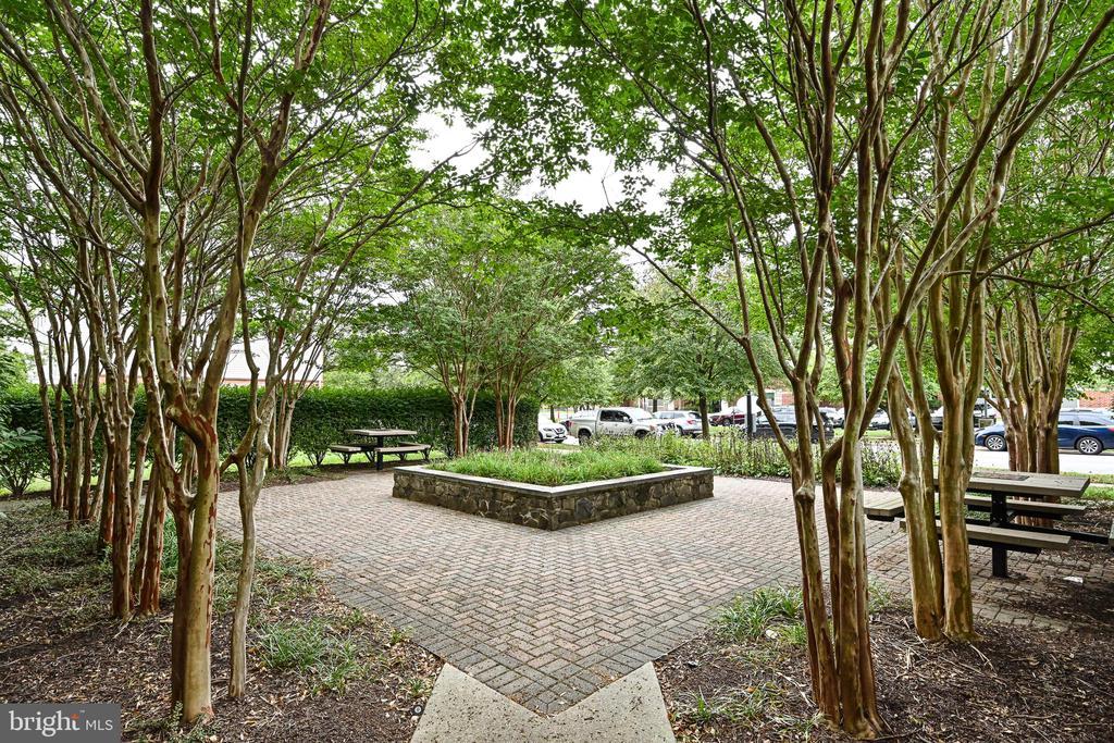 Beautifully landscaped neighborhood - 42791 SMALLWOOD TER, CHANTILLY