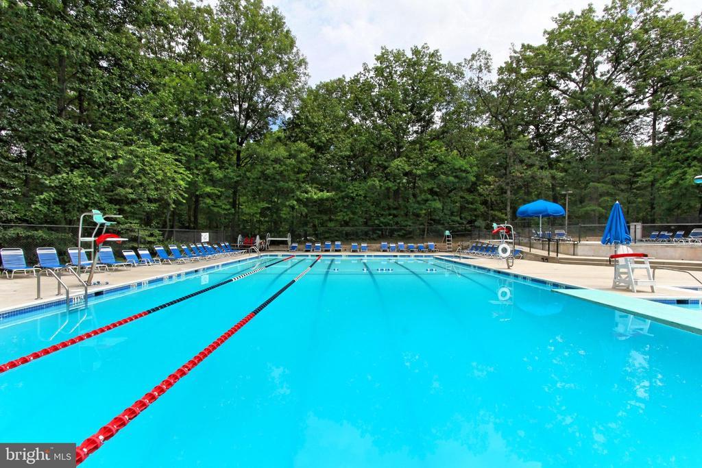 Convenient community pool! - 11704 NEWBRIDGE CT, RESTON