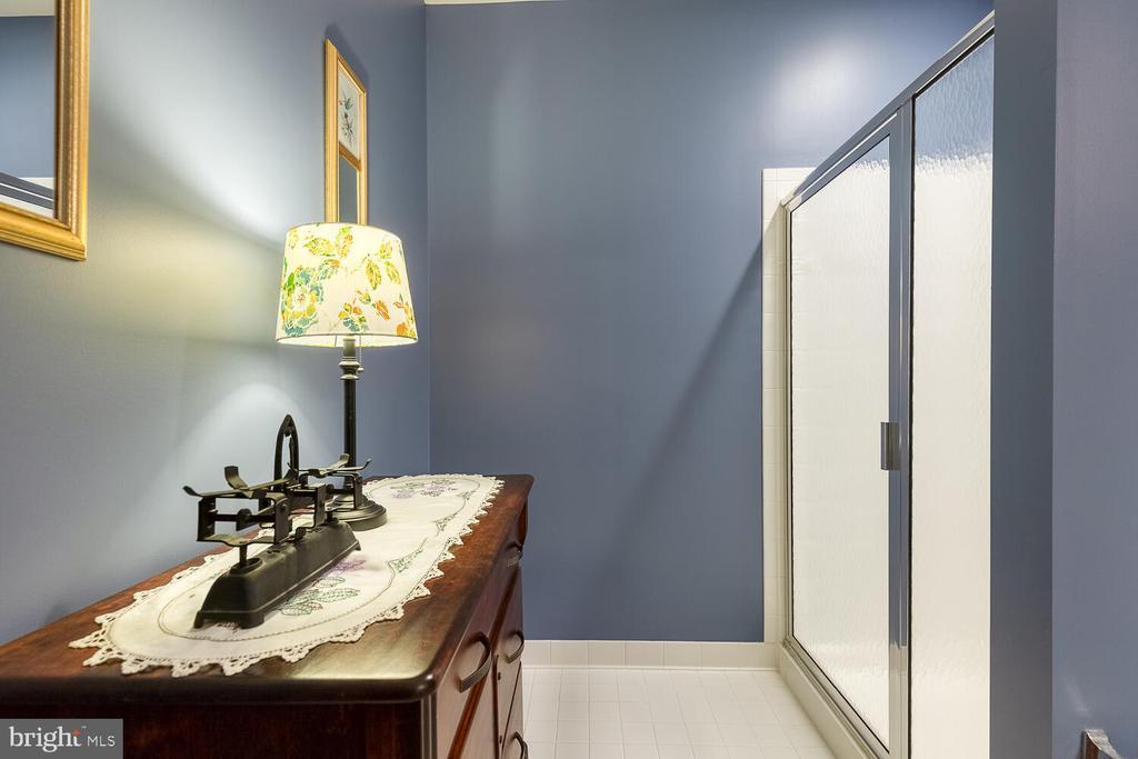 Hall bath has room for furniture - 8635 LAROQUE RUN DR, FREDERICKSBURG