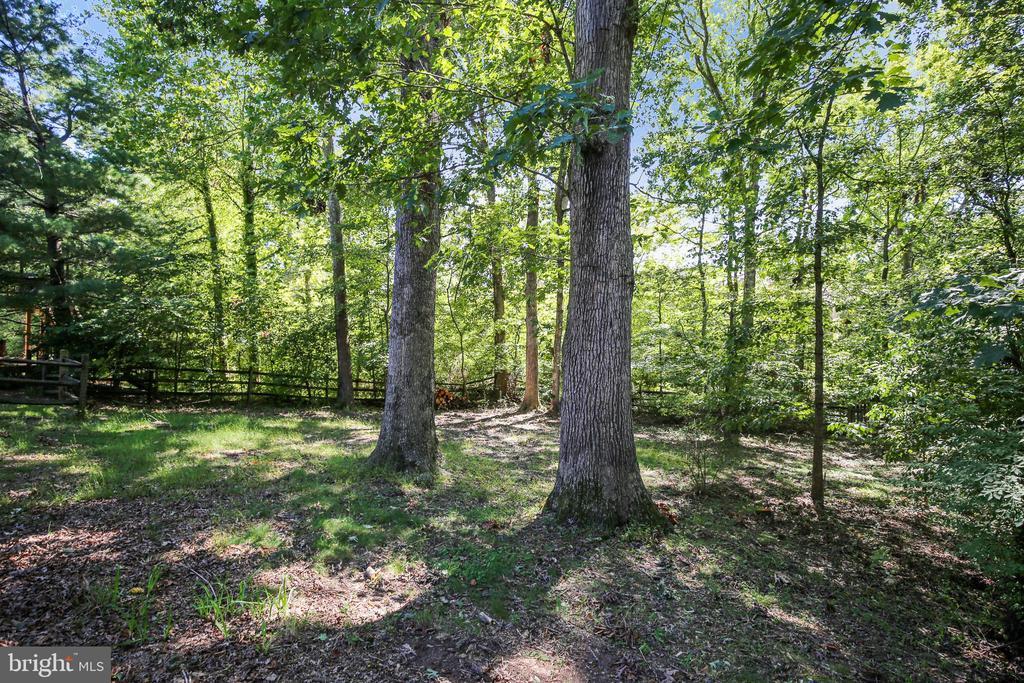 Wooded fenced yard - 11955 GREY SQUIRREL LN, RESTON
