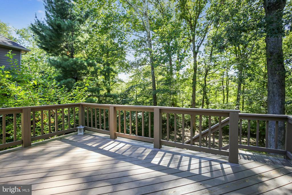 Perfect for dinner on our wonderful fall nights - 11955 GREY SQUIRREL LN, RESTON