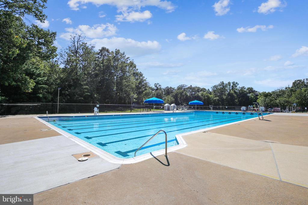 Swimming - 11955 GREY SQUIRREL LN, RESTON