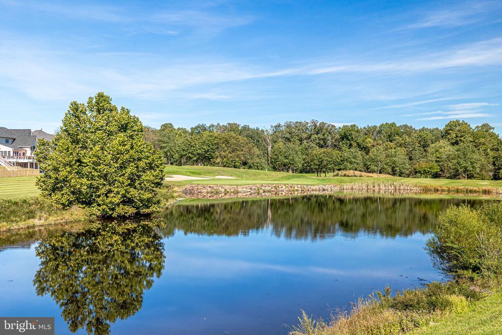 Huge pond - 43400 BLANTYRE CT, ASHBURN
