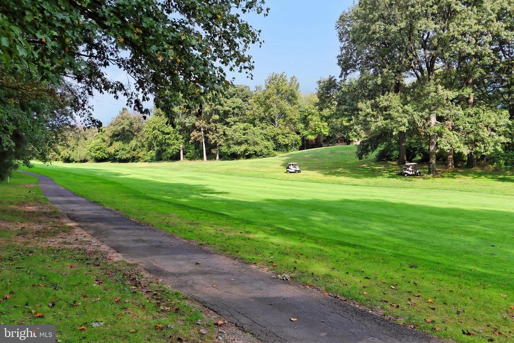 Golf course view! - 11704 NEWBRIDGE CT, RESTON
