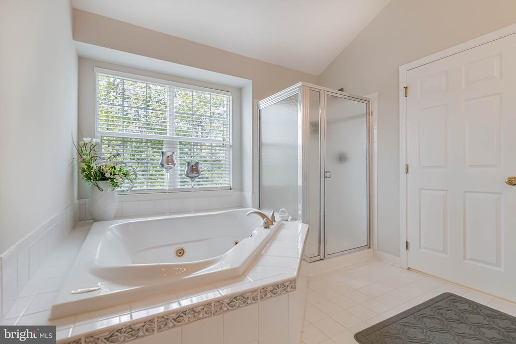 Separate shower and tub, double vanities - 19741 ESTANCIA TER, ASHBURN