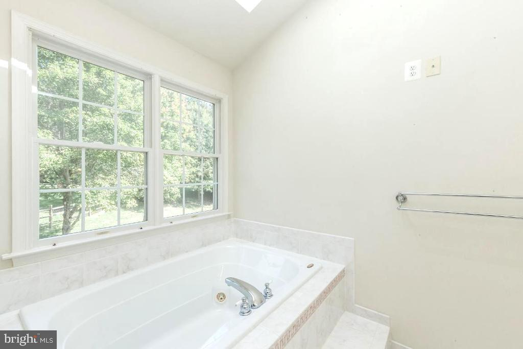 Owners Jacuzzi Tub - 47430 RIVERBANK FOREST PL, STERLING
