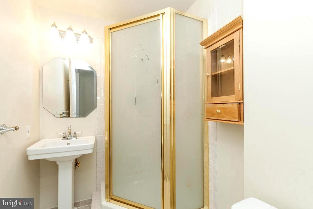 Full Bathroom in Basement - 47430 RIVERBANK FOREST PL, STERLING