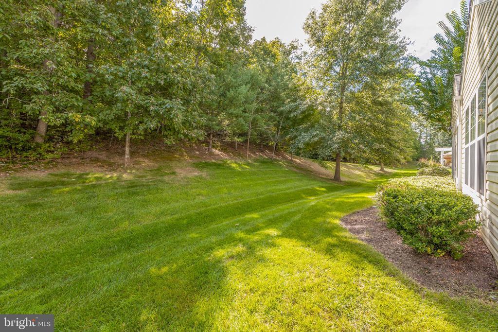 Backyard - 3647 SECRET GROVE CT, DUMFRIES