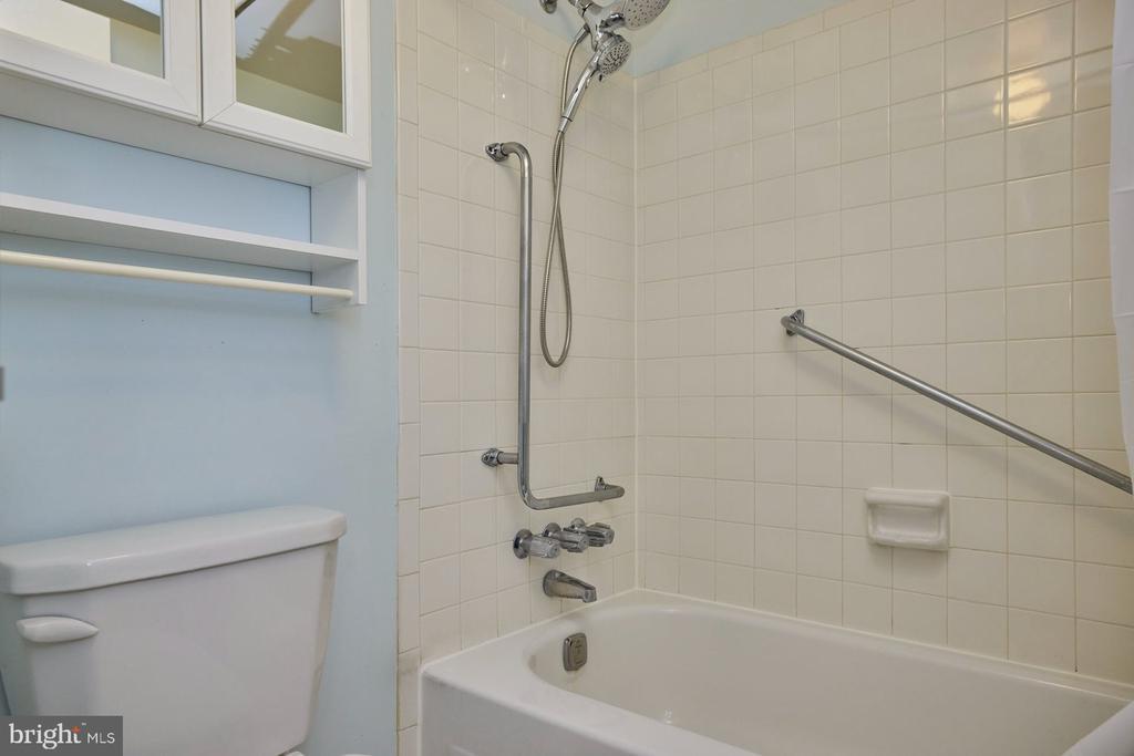 Bathrub - 10300 BUSHMAN DR #204, OAKTON