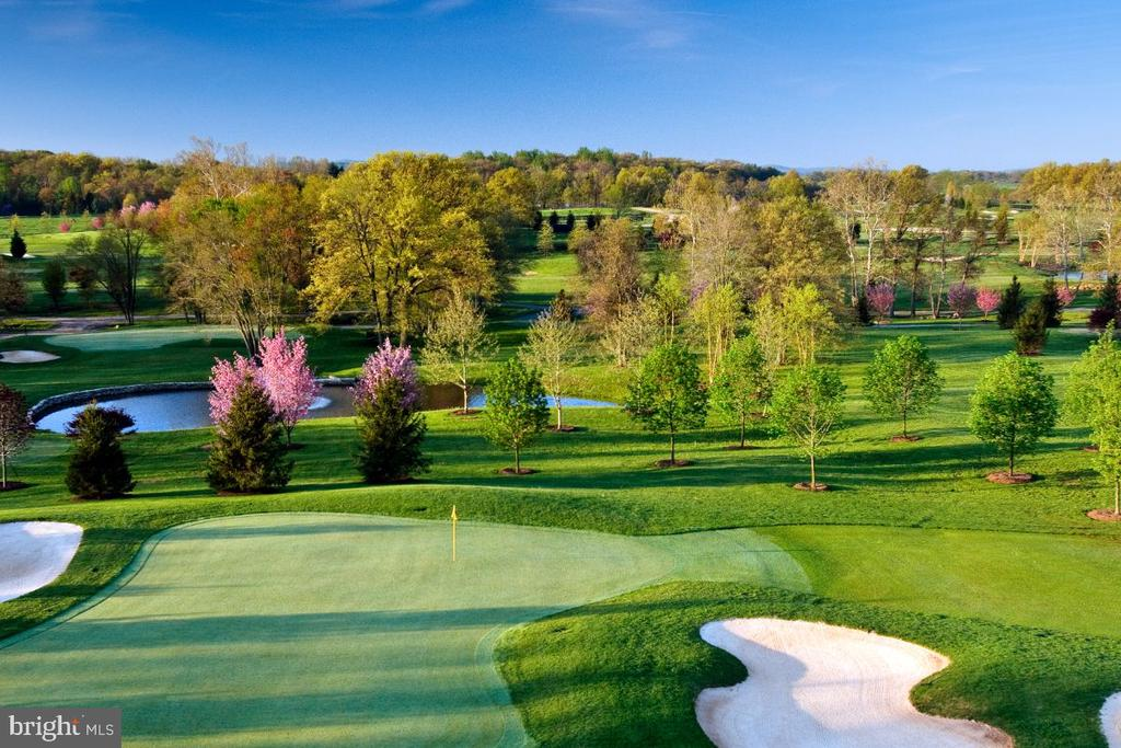 """HERONWOOD FARM AND 18 HOLE PERSONAL GOLF COURSE* - 495 Acres of Perfection close to Washington, D.C.  in the breathtakingly beautiful Upperville, Virginia Countryside.  *GOLF- After trips to Scotland, the owners fell in love with the game of golf and chose to have their own Private 18 Hole Golf Course built to USGA Standards and offering 4 tees boxes per hole. Professionally engineered and meticulously maintained the Fairways, Greens and Ponds are perfectly sited for one to enjoy the serenity of the Blue Ridge Mountain views, providing the perfect escape from the stressful Washington, D. C. lifestyle. * HORSE FACILITIES - Adjacent to the Prestigious Upperville Horse Show Grounds, once part of this estate, Heronwood Farm is a magnificent  Horse Property located in Prime Piedmont Hunt Territory. The Owners of Heronwood commissioned Blackburn Architects to design the 2 main stables which have been featured in Blackburn's Healthy Stables Book, as well as Leffingwell's Ultimate Horse Barns Book.  Blackburn designed the Yearling Stable (8,250 sq. ft) center aisle with 16 (15' x 15') Stalls and Broodmare Stable (9,750 sq. ft.) center aisle with 20 (15' x 15') Stalls + 3 (15' x 15') Birthing Stalls; both barns are in pristine condition and feature continual ridge skylights and vertical ventilation providing exceptional light and fresh air.  Additional equestrian facilities include:  Polo Field,  120' x 220' outdoor arena, 8 horse Hot Walker,  enclosed lunging pen, 3 isolation buildings, additional stalls, numerous run in sheds,  28 (4  board) fenced paddocks covering approximately 200 acres, 11 bay Service Center, miles of interior roads and stone walls. * HISTORIC GRAFTON MANOR HOUSE, c. 1903, with it's grand 42"""" wide entry door, 10' ceiling height, 8' high windows and plaster mouldings, was completely restored and redesigned by Blackburn Architects for staff housing into 4 (2 bedroom) Apartments and Farm Office.  Additional Housing: Farm Manager's House, Staff House, and """