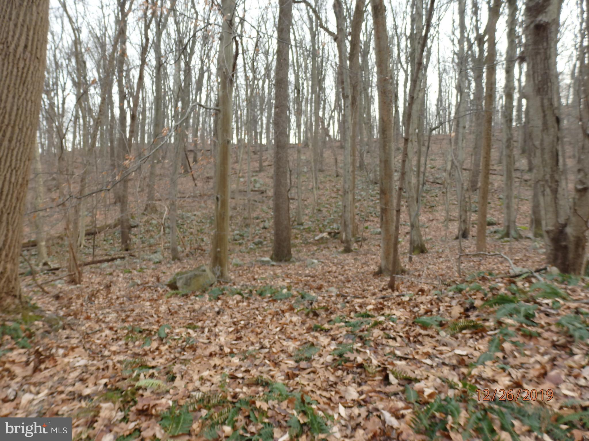 0 Dogwood Lane, Riegelsville, PA 18077