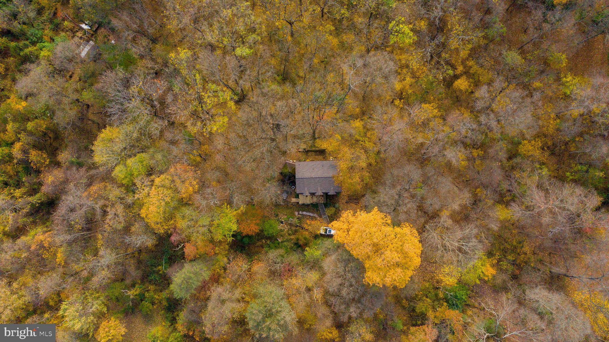 7 OWL BRANCH LANE, PARKTON, MD 21120