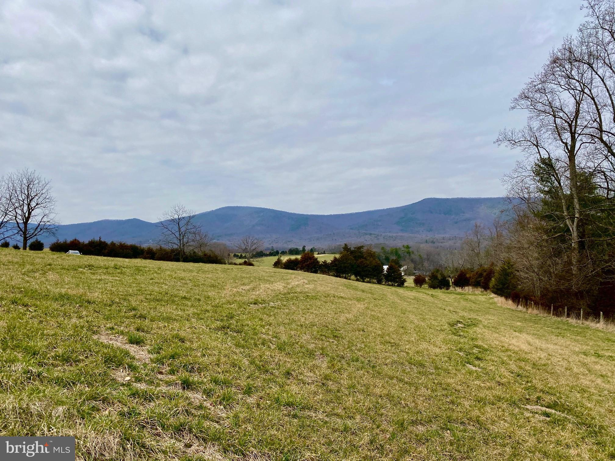 14.94 ACRE LOT ST. DAVIDS CHURCH ROAD, FORT VALLEY, VA 22652