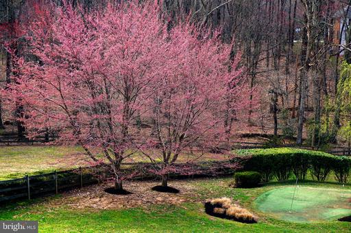11609 Meadow Ridge Ln Great Falls VA 22066