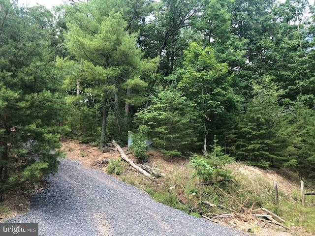 Potomac Overlook Lot 12, Brandywine, WV 26802