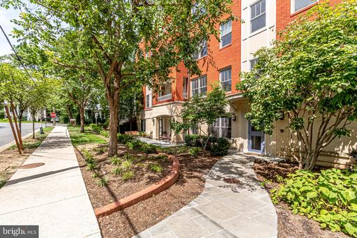 3131 9th Rd N #23, Arlington, VA 22201