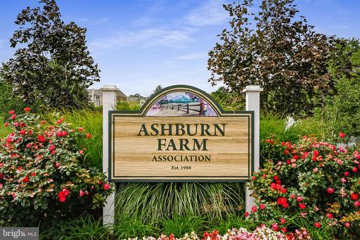 43473 Plantation Ter Ashburn VA 20147