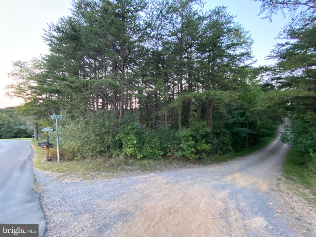 Unrestricted 2 Acres -   Located along a back country road this may make the perfect place for you to build your home or even camp.