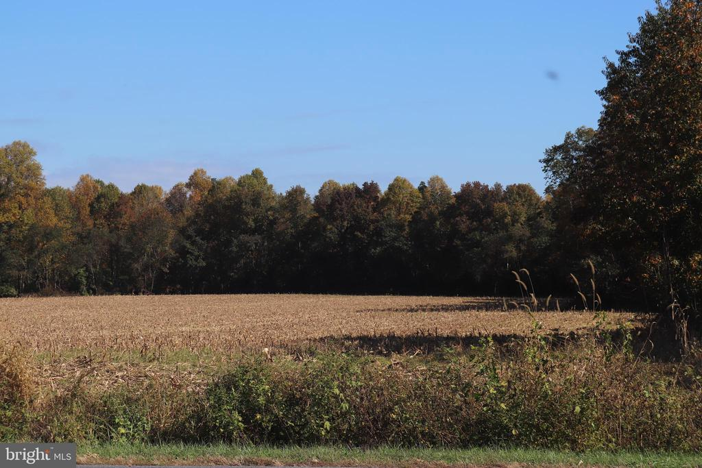 Do you dream of living in the country? Beautiful 29.27+/- acre parcel.   Sellers are working on getting the property perc tested.  Land is currently being farmed.