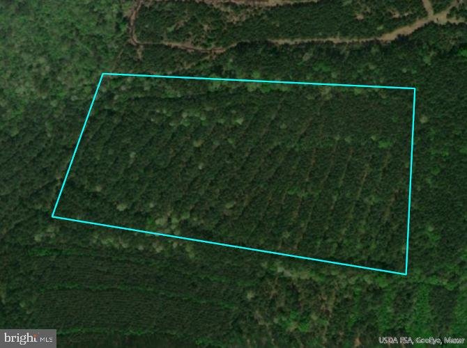 Timberland bordering State of Maryland property.  Offers whitetail, sika deer and turkey hunting.