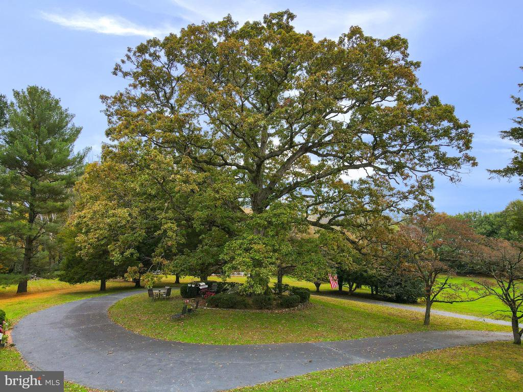 Welcome to Great Falls Historic Marker Oak. A 300 year old remarkable White Oak Tree on over 8 Acres of flat land that can be subdivided to 4 lots. As part of the statewide celebration of the 400th anniversary of the founding of Jamestown in 1607, McLean & Great Falls Celebrate Virginia 1607-2007 has announced that Marker Oak in Great Falls has been recognized for its  historic provenance and received a plaque in recognition. This one-of-a-kind property is located in the heart of Great Falls with minutes from Great Falls Village and equestrian trails to Great Falls National Park. Mature trees provide for complete privacy. The sales price includes lot (0131 01 0075) and  (0131 01 0075A1). House and Barn on property is sold as-is.