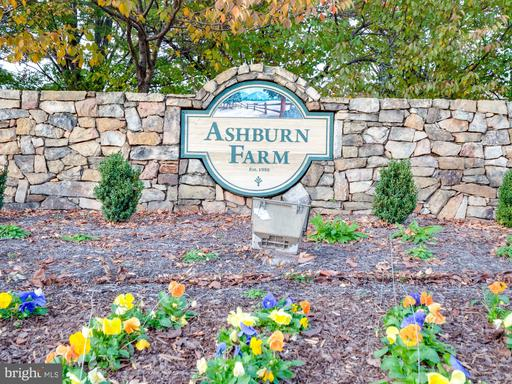 21186 Hedgerow Ter Ashburn VA 20147