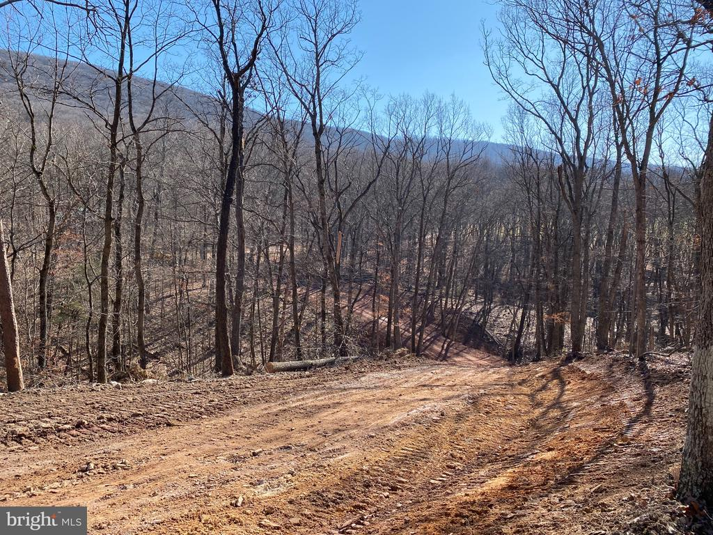 Hunt, Shoot and Camp on this 21.92 wooded acres.  Or just enjoy nature.   Driveway installed on lot for easy access to your building on camping spot among the hardwood trees.    Enjoy the access to Sleepy Creek Public Forest - 22,000 acres.  G