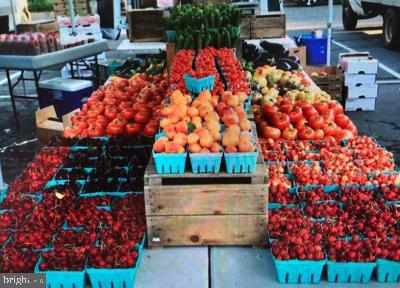 1605 Apricot Ct Reston VA 20190