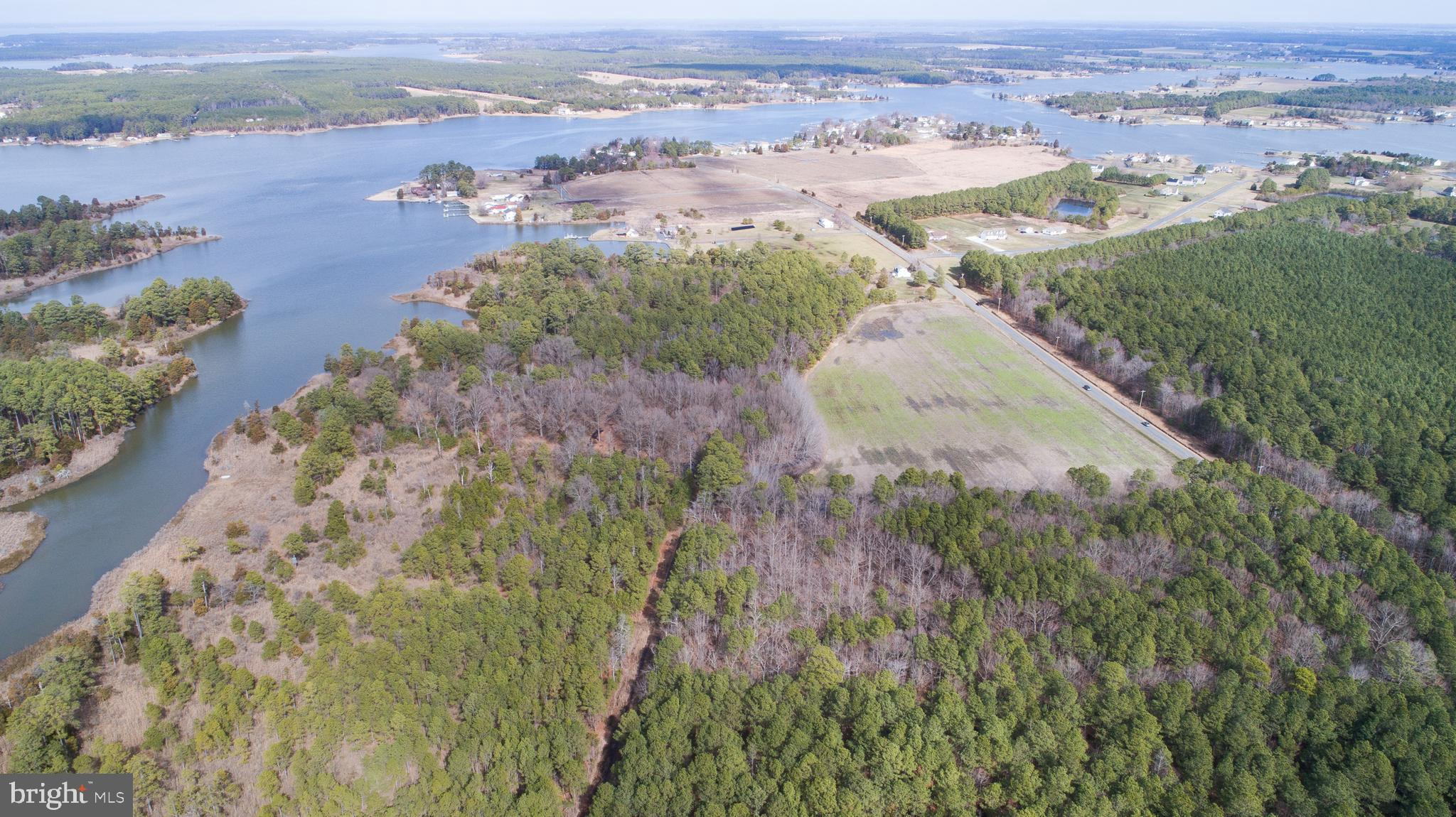 Waterfront property with beautiful views and excellent hunting! 52,81 +/- acres some cleared land, old growth woods, pine and marsh.  Some engineering work has been competed. Survey on file.