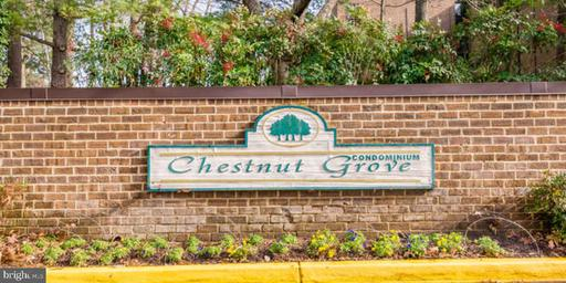 11232 Chestnut Grove Sq #334