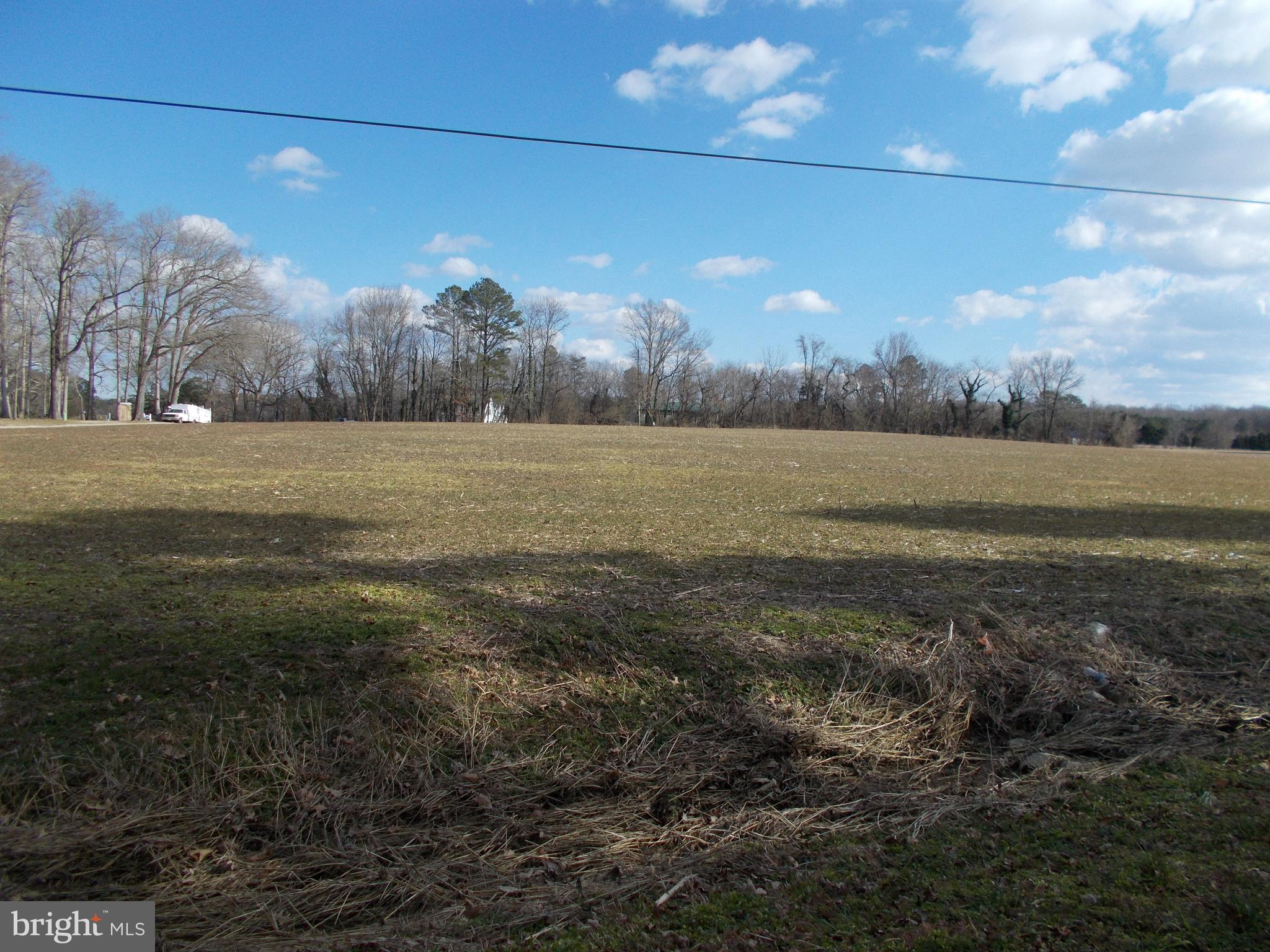 Nice, high lot on Suicide Bridge Road. Close to Suicide Bridge Restaurant and Secretary boat ramp.  Cleared land.