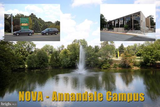 8212 Briar Creek Dr Annandale VA 22003
