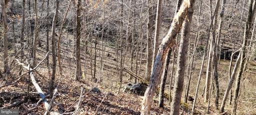 12018 Deerfield Ln Amissville VA 20106