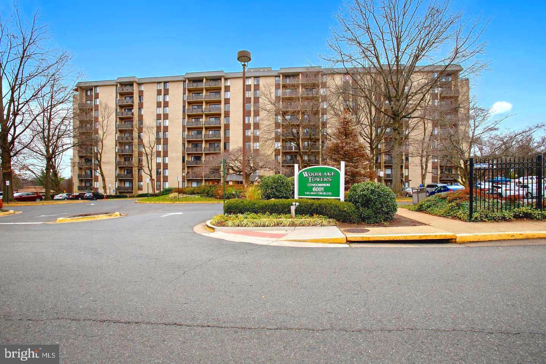 6001 Arlington Boulevard  #810 - Falls Church, Virginia 22044