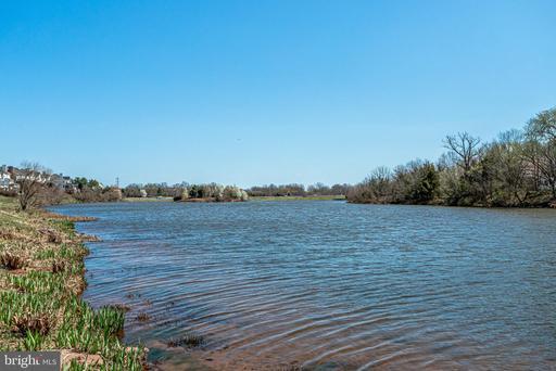 21093 Roaming Shores Ter Ashburn VA 20147