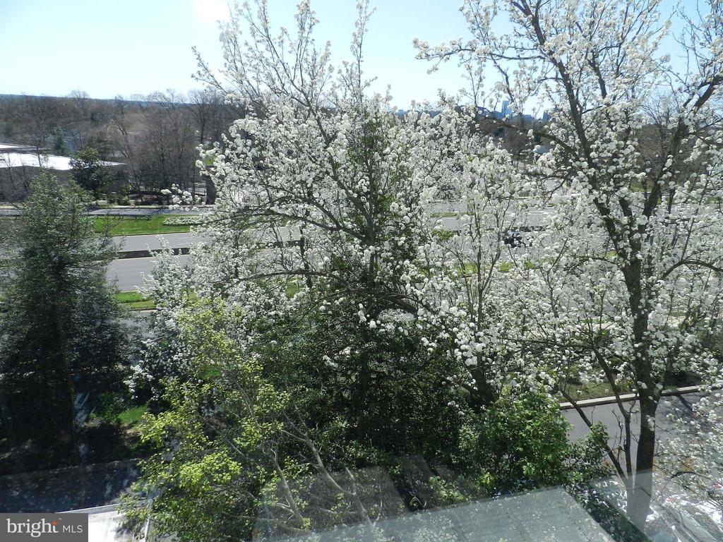 Photo of 4501 Arlington Blvd #614