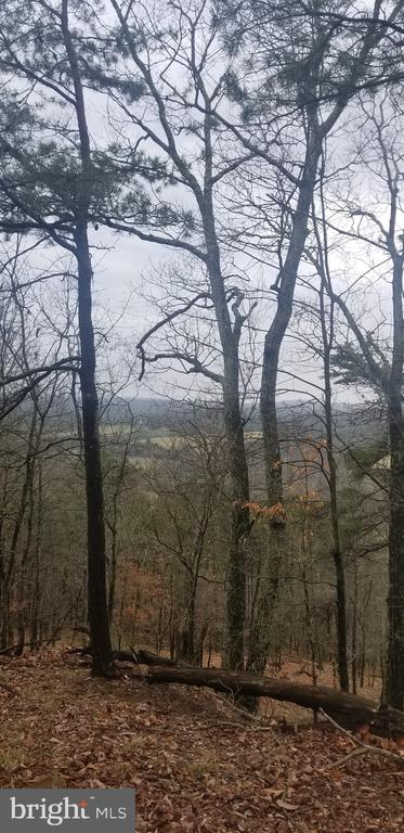8 Wooded Acres - Fronting a state maintained road.   Build a road into this parcel and build your home in the middle .   Enjoy your privacy and the view of the mountains.   Just a few restrictions included in the deed.