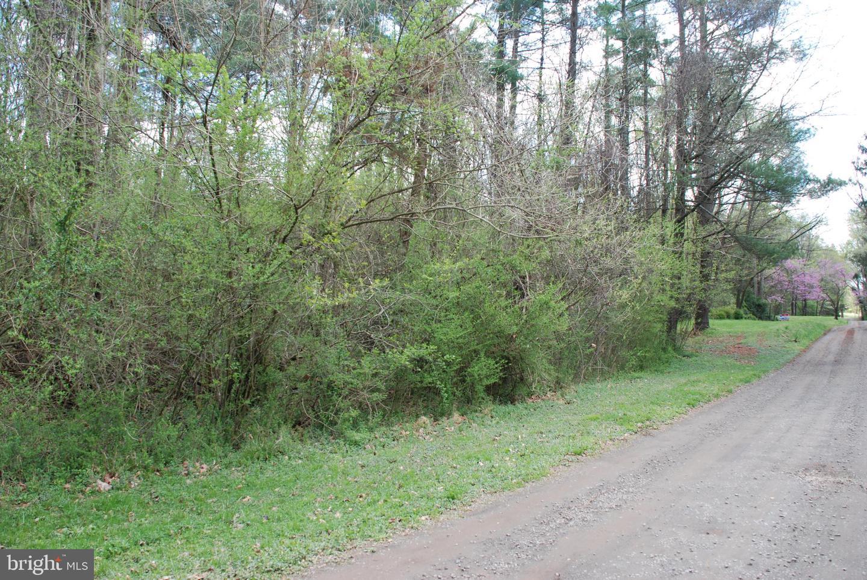 Wedgewood Lane Culpeper, VA 22701