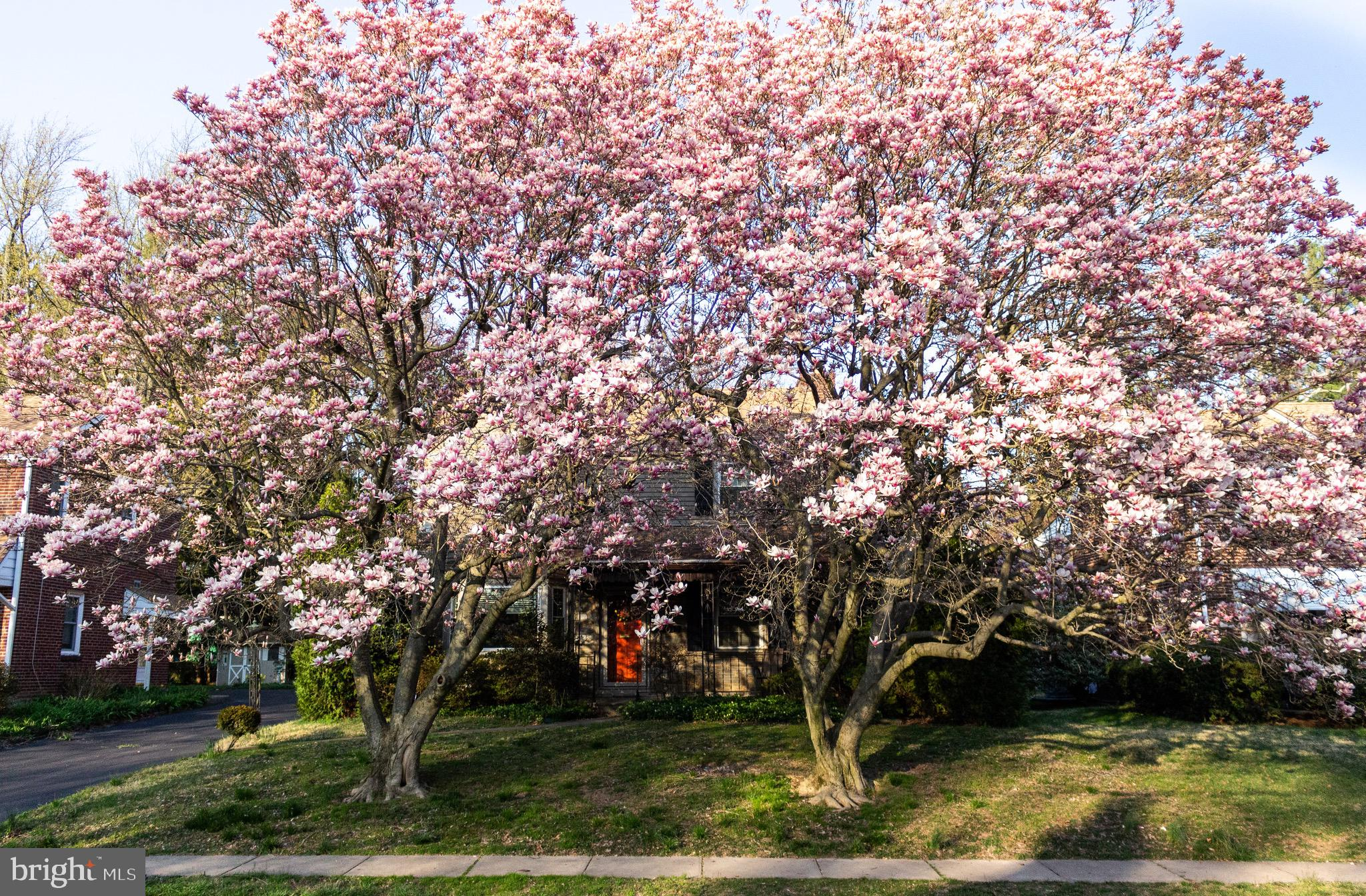 Welcome home to this beautiful Colonial in Lower Merion! Before entering you will see a large, covered stone patio perfect for sitting out and enjoying a cold beverage on a summer day. As you enter the house you will notice a spacious living room with beautiful hardwood floors and a fireplace that's perfect for entertaining. Continue through to the dining room and you will be struck by an abundance of natural light coming from the large bay windows. All windows in this home are new! Next, the kitchen is fully equipped with stainless steel appliances and a door to the driveway that is convenient for unloading groceries and access to the backyard. Outside you will find a large shared driveway (with quiet and very friendly neighbors), an attached garage, carport, and a flat yard great for summer gatherings! A wrought iron bannister and bright hardwood steps will lead you upstairs where you will find three spacious bedrooms and one and a half bathrooms. In addition, you have access to another outdoor patio space from one of the bedrooms. Downstairs you will find a finished basement, laundry, and plenty of space for storage! You will be in coveted Lower Merion school district, minutes from South Ardmore Park, Whole Foods, Bryn Mawr restaurants and plenty more! Don't miss out on your opportunity to become the next owner of this lovely home!
