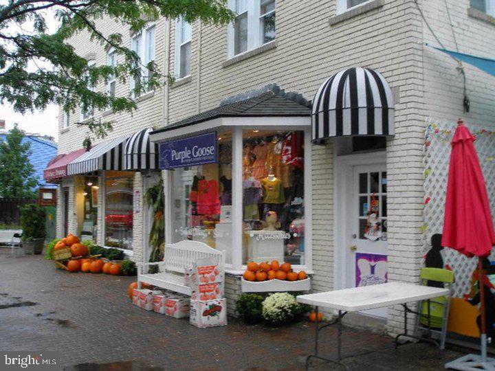 2005 Mount Vernon Avenue  #APT 3 - Alexandria City, Virginia 22301