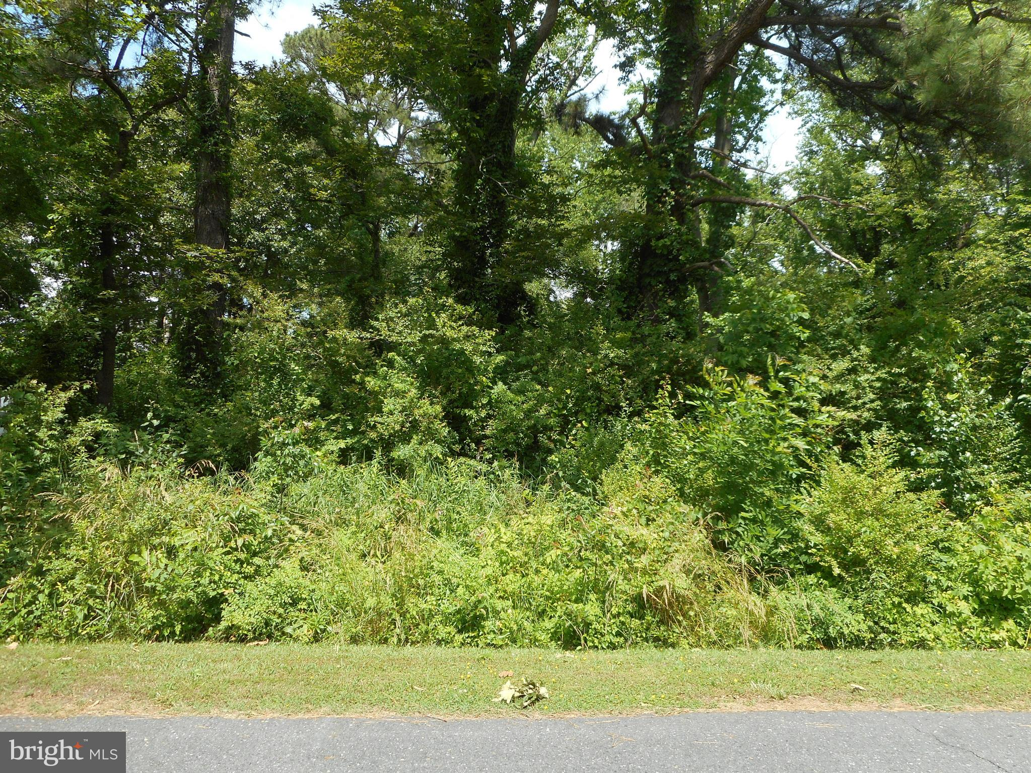 One of the few beautiful lots left in the Bayview Estates subdivision. Less than one  block from the Choptank River, close to the  downtown restaurant and entertainment district, and the Historic District.