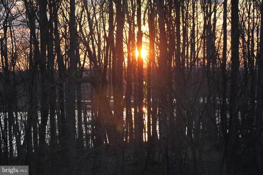 15554 Marsh Overlook Dr Woodbridge VA 22191
