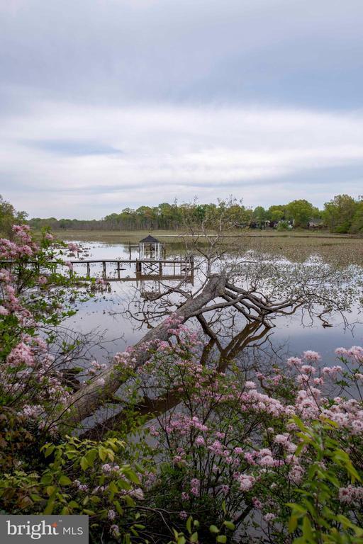 Photo of 3163 Woodland Ln