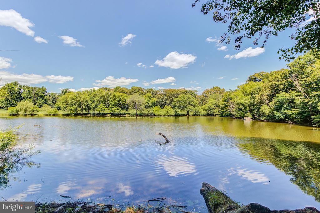 2165 Pond View Ct