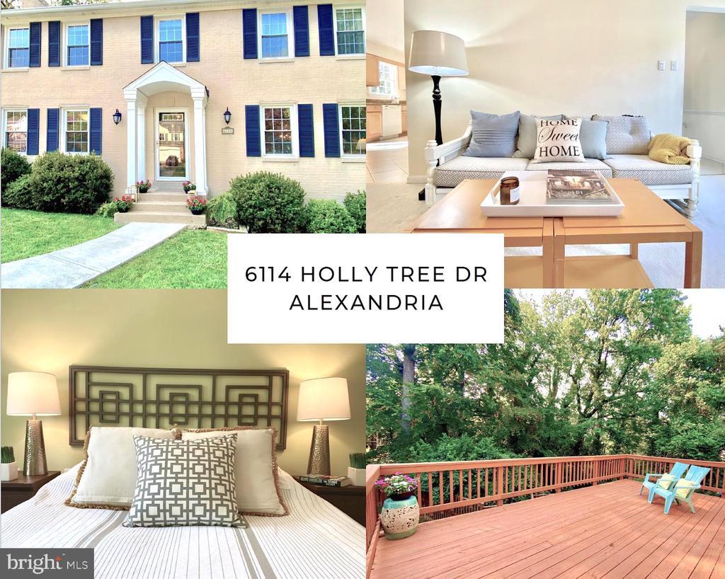 6114 Holly Tree Dr, Alexandria, VA 22310